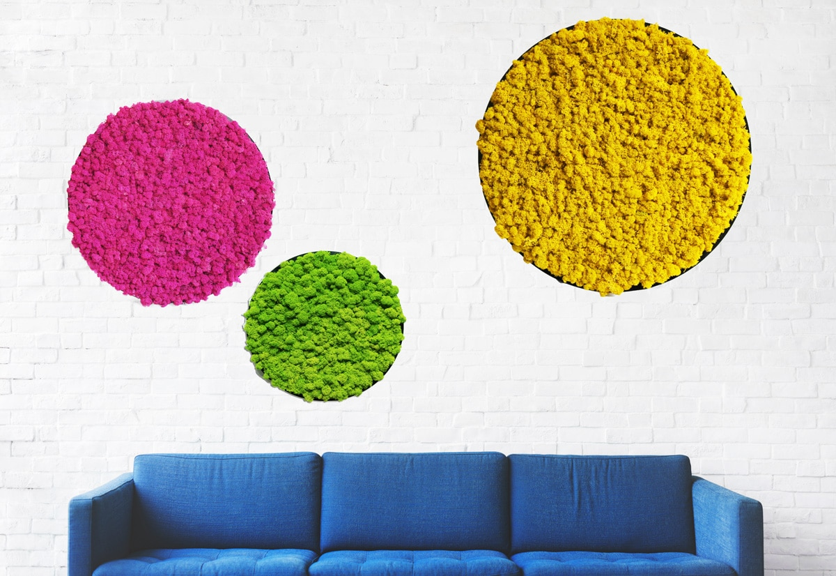 How to decorate office space, room or apartment ?!