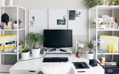 Kako osvježiti uredski stol zelenilom